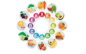 Opname, verwerking en afbraak vitamines en mineralen